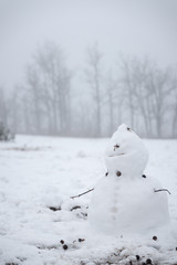 Melt snowman and defocused background.