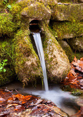 Natural spring flowing from the ground