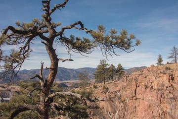desert canyon rocks