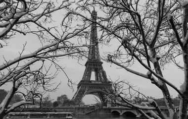 The black and white Eiffel tower with bare trees in winter, Paris, France.