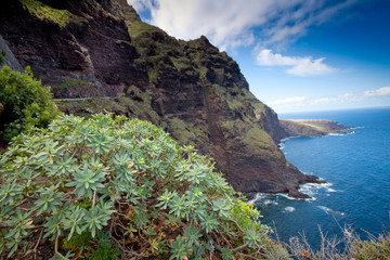 Tenerife, Canary Islands, Spain - road on the coast and panoramic view