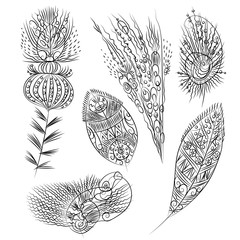 Set of fantasy feathers. Tribal feathers. Vector illustration.