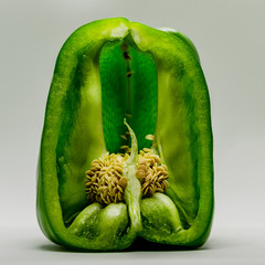 Isolated photo of Green pepper
