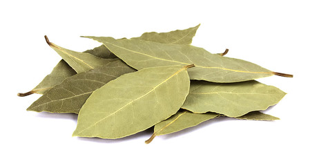 Bay leaves isolated on white background Wall mural