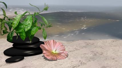 rose Blüte, Orangenbaum und Bimssteine auf Sandstrand vor der Weite des Meeres. 3d render
