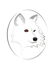 White wolf isolated