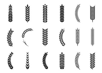 Vector wheat ears icons. Oat and wheat grains