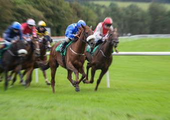 Galloping motion blur horserace