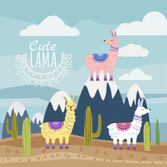 Set of Cute vector lama and cactus, mountaine landscape. Vector illustration