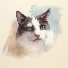Cute cat. Watercolor portrait of a cat. Drawing of a cat with green eyes executed in watercolor. Good for print T-shirt. Art background, banner for pet shop. Hand painted watercolor cat illustration.