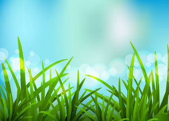 Nature spring background. Vector illustration.
