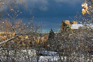 Snow and sunlight on historic St. Francis Cathedral, trees, and buildings in Santa Fe, New Mexico, USA