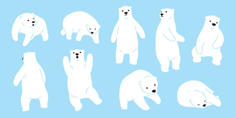Bear vector Polar Bear logo icon doodle illustration character cartoon