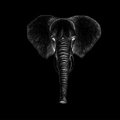 The Vector elephant style for T-shirt design or web design and or material.
