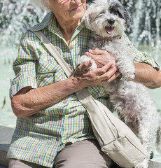 Beautiful Senior Woman Hugging her Cute Dog in the Park
