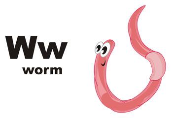 worm, earthworm, parasite, pest, illustration, pink, cartoon, abc, w,