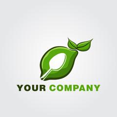 Fruit Food Healthy  Logo Template vector icon design