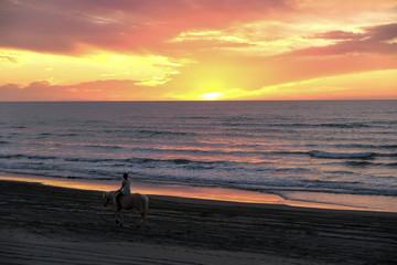 Sunset on the Coast of New Zealand