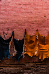 Goat skins druing on wall in local tannery,Morocco