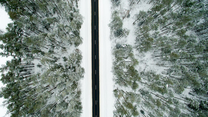 Winter forest and asphalt road. View from above. The photo was taken with a drone. Pine and fir forest in the snow