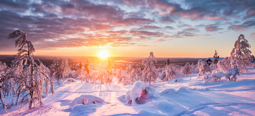 Aluminium Prints Salmon Winter wonderland in Scandinavia at sunset