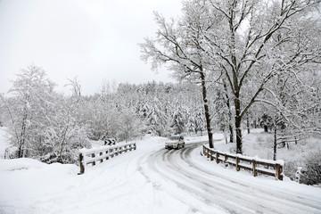 carretera nevada curva país vasco 4M0A5846-f18