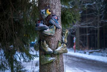 kaputte Wanderschuhe am Baum