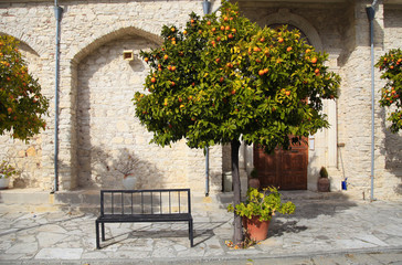 orange tree and bench in picturesque village Laneia (Lania), Cyprus
