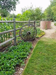 Old well in summer garden
