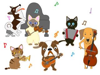 犬と猫のコンサート。