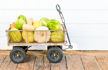 rustic wagon filled with watermelons and squash on a wooden floor