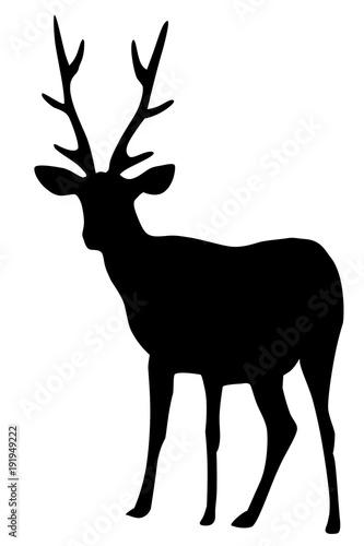 シカのイラスト 左向き 黒 Stock Photo And Royalty Free Images On