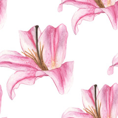 Seamless pattern with pink lilies on white background. Watercolor illustration.