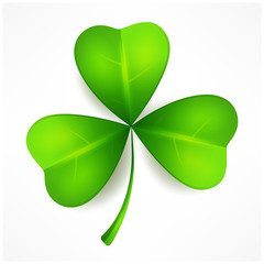 Green clover leaf, three isolated on white, for St. Patrick's
