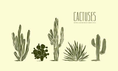Stock vector set of hand drawn cactus