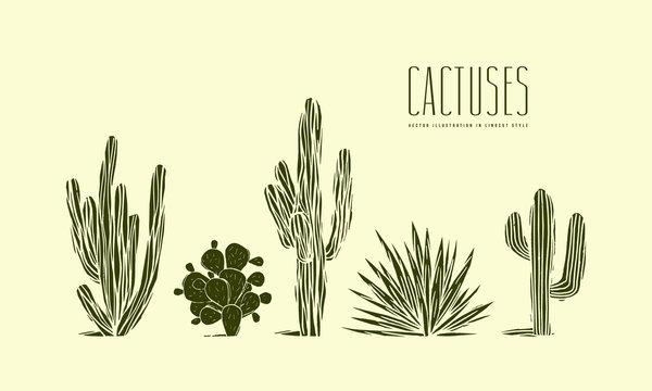 Stock vector set of hand drawn cactus