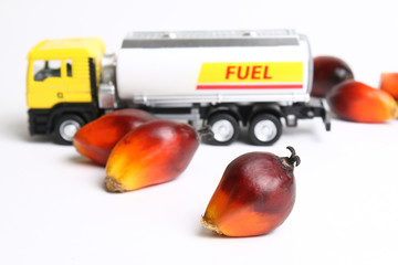 Concept of palm oil biofuel using oil palm fruitlets and toy tanker truck