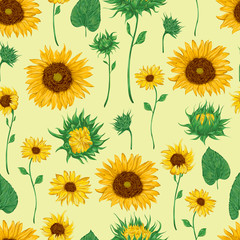 Seamless pattern with sunflowers. . Flowers, buds and leaf. Vintage vector illustration in watercolor style.