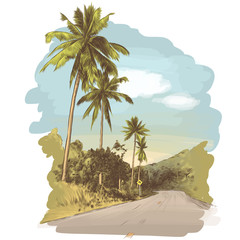 road and jungle with palm trees on the edges, sketch vector graphics colored drawing