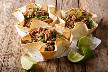 Spicy Mexican tortilla with pulled beef close-up. horizontal