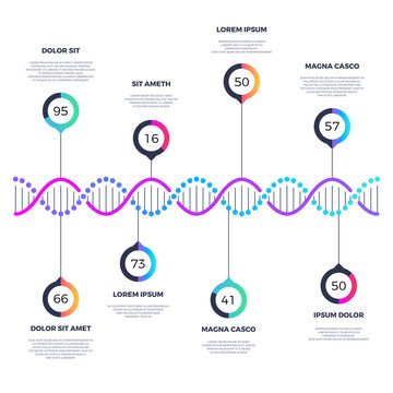 Abstract dna molecule vector business infographic with options