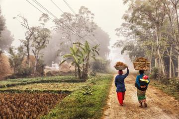 Photo sur Aluminium Népal Foggy Rural Scene, Terai, Nepal