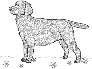 Dog Labrador Antistress Coloring Book. Vector