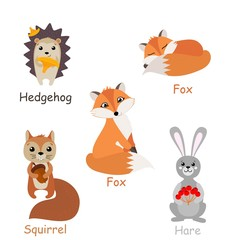 Set of isolated forest animals. Vector illustration.