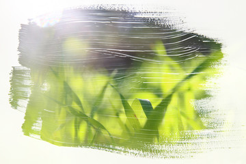 image of the meadow with green young grass. double exposure effect with watercolor brush stroke texture
