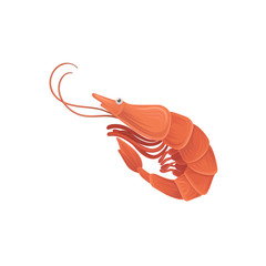 Cartoon illustration with sea shrimp in flat style. Tasty gourmet seafood. Vector design element for restaurant menu, promotion poster or flyer