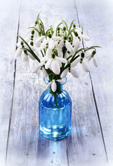 Bouquet of snowdrops flowers in a vase. Still life with bouquet of spring flowers.
