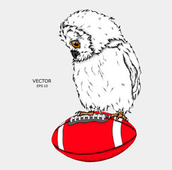 Portrait of an owl on a ball. Can be used for printing on T-shirts, flyers and stuff. Vector illustration