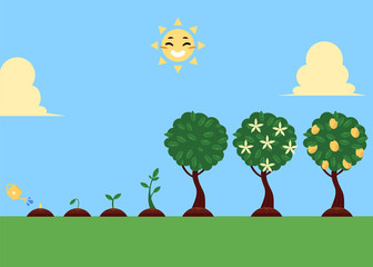 Vector flat tree planting stages, symbols icon set. green tree apple, pear fruits with foliage, sprouting seedling, watering can pouring seed, smiling sun. illustration sky grass landscape background