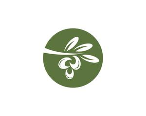 olive logo template vector illustration